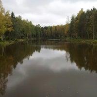 Photo taken at Пруд с Рыбами by Андрей Б. on 9/22/2012