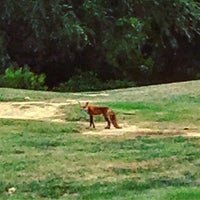 Photo taken at Langston Golf Course by Rob D. on 9/3/2016