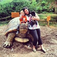 Photo taken at Staten Island Zoo by Dana D. on 9/28/2013