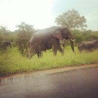 Photo taken at Lower Sabie Rest Camp, Kruger National Park by Norman K. on 12/16/2012