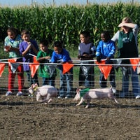 รูปภาพถ่ายที่ Fantozzi Farms Corn Maze and Pumpkin Patch โดย Fantozzi Farms Corn Maze and Pumpkin Patch เมื่อ 7/27/2013