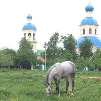 Photo taken at Конюшня в Ясенево by Antonina D. on 5/18/2013