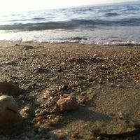 10/26/2012 tarihinde Gürcanziyaretçi tarafından Güzelyalı Sahili'de çekilen fotoğraf