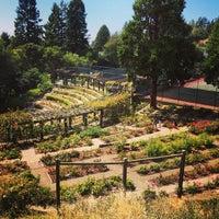 photo taken at berkeley rose garden by daniel eran d on 622 - Berkeley Rose Garden