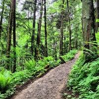 Foto tomada en Forest Park - Wildwood Trail por Daniel Eran D. el 5/19/2013