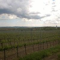 Photo taken at Ochutnávkový stánek by Petr Č. on 5/9/2014