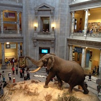 Photo taken at National Museum of Natural History by Harjit on 4/21/2013