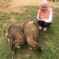 Photo taken at Rabbit Park by Atikah Halim on 12/25/2016