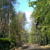 Photo taken at Český Ráj by Radek on 4/29/2017