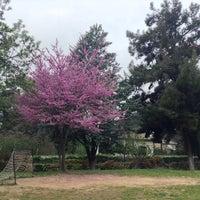 Photo taken at Anatolia Kindergarten (Willard Hall) by Dimitris T. on 4/4/2014