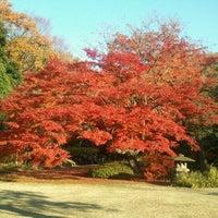 Снимок сделан в Rikugien Gardens пользователем しまじろう。 12/1/2012