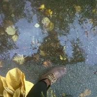 Foto scattata a Le Mura di Lucca da Ilaria B. il 10/27/2012