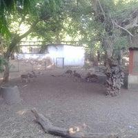 Photo taken at Kamathi Baug by Akansha P. on 5/26/2014