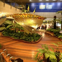 Photo taken at Singapore Changi Airport (SIN) by Thomas L. on 11/7/2013