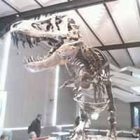 Photo taken at Museum of Natural Sciences by Louis D. on 2/10/2013