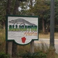 Photo taken at Alligator Adventure by Dawn G. on 11/20/2012
