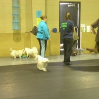 Photo taken at Doggie Central by Christina C. on 4/23/2013