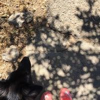 Photo taken at Peralta Mini Park by Renée V. on 7/16/2016