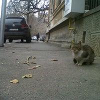 Photo taken at Strada Armenească by Oana S. on 12/12/2013