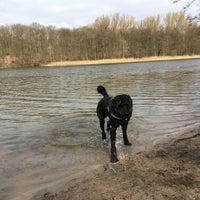Photo taken at Hundestrand Grunewaldsee by Stephanie H. on 4/2/2017
