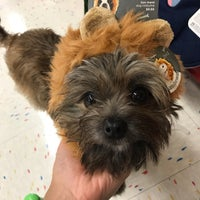 Photo taken at Petco by Christina L. on 10/6/2017