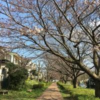 Photo taken at ふるさと尾根道緑道 by Hiroshi S. on 3/27/2016