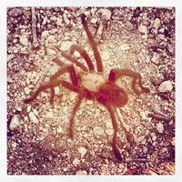 Photo taken at Devils Waterhole by Christopher C. on 6/10/2013