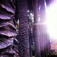 Foto scattata a Jardins de Vil·la Amèlia da Raig de Llum il 12/12/2012
