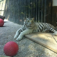 Photo taken at ZOO Liberec by Liene P. on 7/6/2013