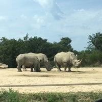 Photo taken at Safari de Peaugres by Stéphanie R. on 7/30/2017
