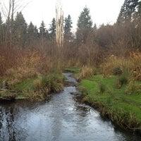 Das Foto wurde bei Kelsey Creek Park von Mark S. am 12/8/2012 aufgenommen