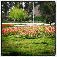 3/27/2013 tarihinde Benimarfe .ziyaretçi tarafından Bayramyeri'de çekilen fotoğraf