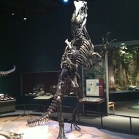 Photo taken at Science Museum of Minnesota by Jennifer W. on 11/18/2012