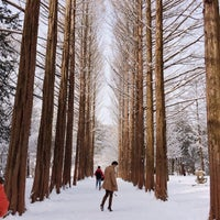 Photo taken at Nami Island by Kevin S. on 2/9/2014