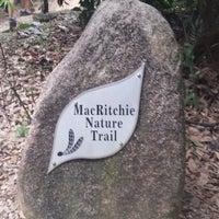 Das Foto wurde bei MacRitchie Nature Trail von Lee Lee am 3/14/2015 aufgenommen
