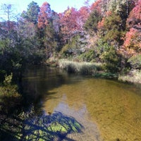 Photo taken at Turkey Creek Nature Trail by Tiffany R. on 11/18/2012