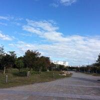 Photo taken at 尼崎の森中央緑地 by Yasushi O. on 11/12/2017