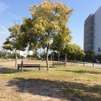 Photo taken at 尼崎の森中央緑地 by Yasushi O. on 10/4/2015