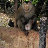Photo taken at National Zoo Kampot by Simon W. on 1/24/2015