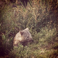 Photo taken at Wilsons Promontory National Park by Eva L. on 7/13/2013