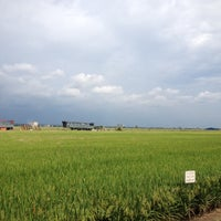 Photo taken at Site A Sekinchan by 慧香 on 11/16/2013