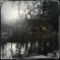 Photo taken at Descanso Gardens by Geoff Y. on 1/31/2013