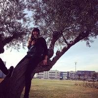 Photo taken at Universidad Rey Juan Carlos (Campus Fuenlabrada) by Marta on 1/30/2013