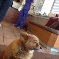 Photo taken at Granville Island Veterinary Hospital by Moneca Y. on 1/11/2013