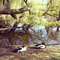 Foto tomada en Vondelpark por Эльвира el 5/1/2013