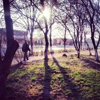 Снимок сделан в Арарат пользователем Olenina💎 12/1/2013