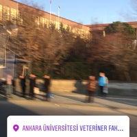 2/17/2018 tarihinde Fatma T.ziyaretçi tarafından Veteriner Fakültesi'de çekilen fotoğraf