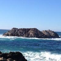 Photo taken at Bird Rock by K C. on 1/1/2013