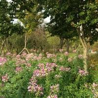 Photo taken at Hanbat Arboretum by Sung-Uk P. on 10/13/2012
