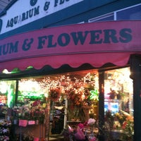 Photo taken at 6th Ave Aquarium and Flowers by Chris M. on 5/26/2013